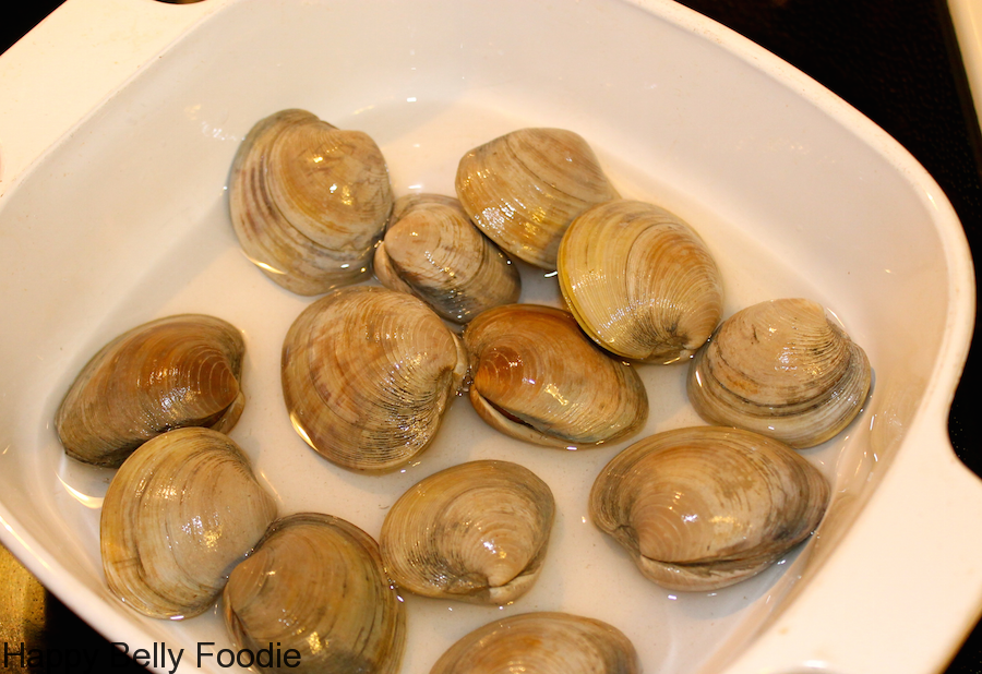 clams live