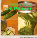 Pack a Pint of Pickles Fast ~ Refrigerator Pickles